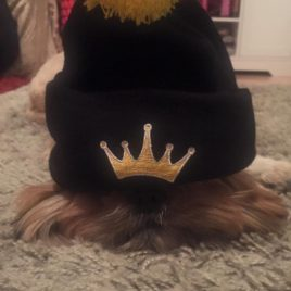 UKMQ Bobble Hat